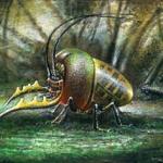 Diamonds Beetle