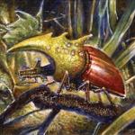Dino Beetle