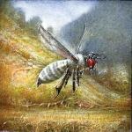 Albee (Albino Bee)